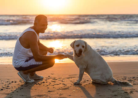 Cyprus - November 11, 2019: Person and dog together on the seashore. Friendship between dog and man