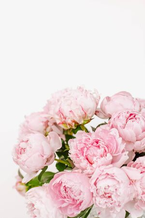 beautiful bouquet of pink peonies on the white background with copy space
