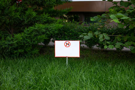 White small sign about prohibition of dog's walking on green grass. Copy space.