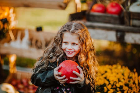 Portrait of young girl holding red pumpkin at the open market place. 스톡 콘텐츠 - 155309352