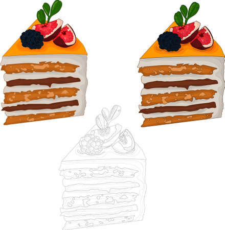 Realistic orange cake slices with fruit and berry on top template set. Vector illustration in color and black and white for games, background, pattern, wallpaper, decor. Coloring paper, page, book