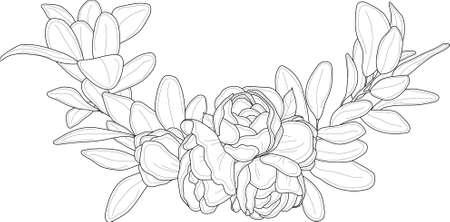 Realistic peony flower bouquet with leafs sketch template border. Corner frame vector illustration in black and white for games, background, pattern, decor. Coloring paper, page, story book, print