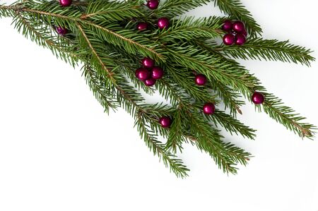 Rama de un árbol de Navidad natural con bolas rojas de frutos rojos