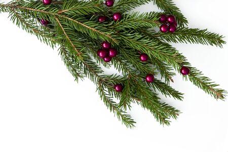 Ramo di un albero di Natale naturale con palline rosse di frutti di bosco