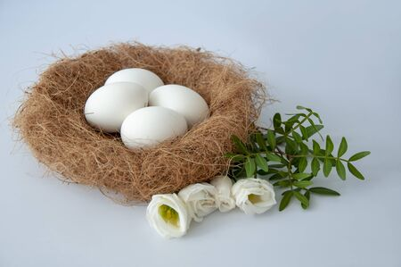 Eggs in a nest on a blue background.White flowers.Copy space for text