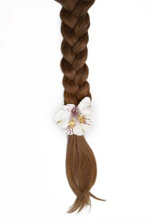 Schönes geflochtenes Haar mit einer weißen Blume.