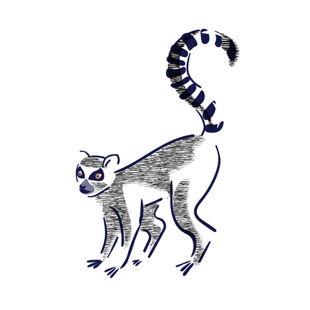 Silhouette of lemur catta  on a white background.Wildlife,enviroment protection. Vector illustration, hand drawn.