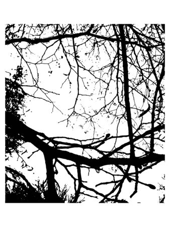 Grunge overlay texture. Dirty branches vector  background. Foto de archivo - 129389421