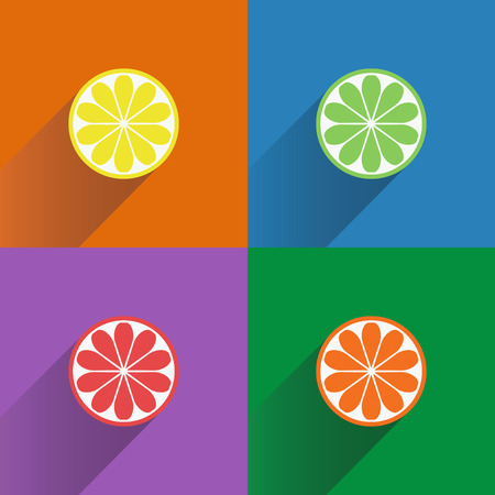 citrus fruits: Collection of four citrus fruits icons in flat style.  Illustration
