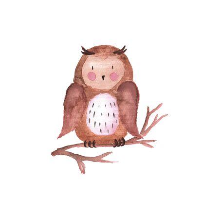 Owl Watercolor Vector