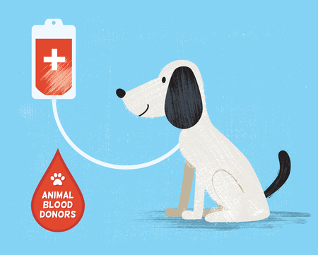 transfusion: Animal blood donor. Vector illustration.