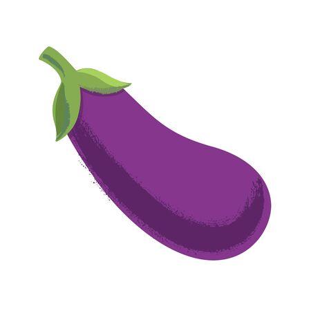 Vegetable. Eggplant Vector illustration Eps 1 0
