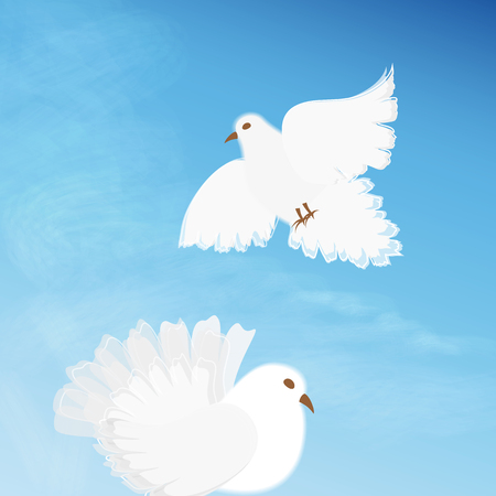 faithfulness: Two white dove on background of blue sky with clouds