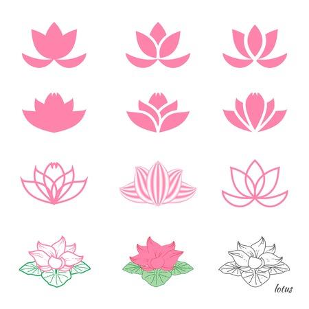flor de loto: Conjunto de doce bocetos diferentes de flor de loto Vectores