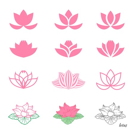 Set of twelve different sketches of  lotus flower Vector