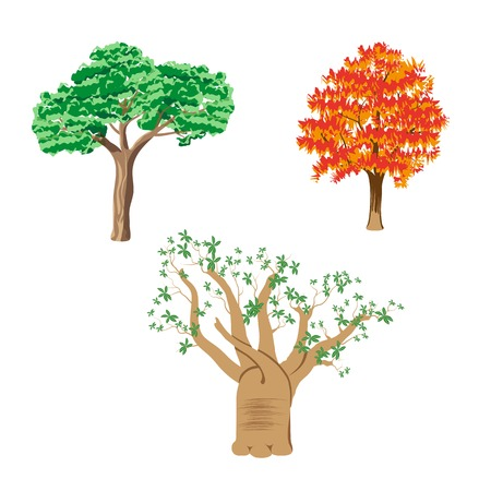Three different green tree set on white background Vector
