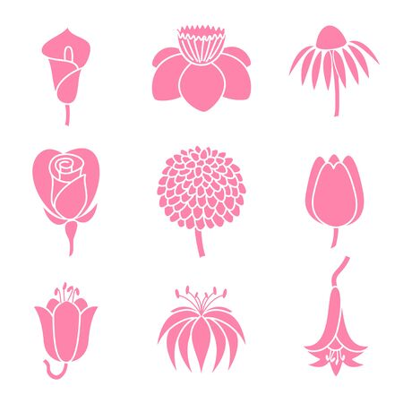 lilia: Set of sketches of nine different flowers isolated on white background