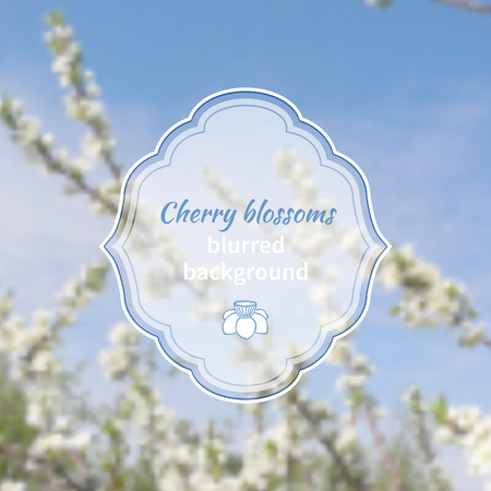 Blurred background with cherry blossoms or sakura flowers with frame for text and icon of flower Vector
