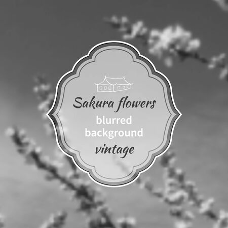 Blurred black and white background with cherry blossoms or sakura flowers with frame for text and icon of the Japanese home Vector