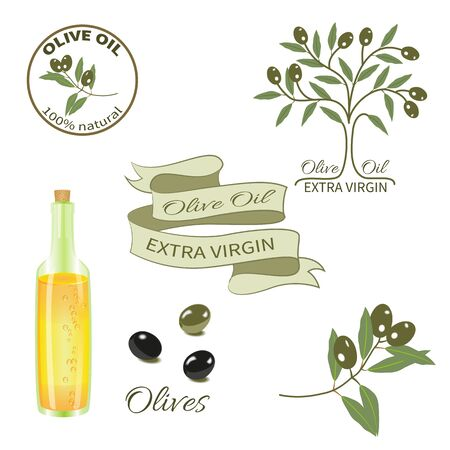 Set for design.A bottle of olive oil, the olive tree,branch with olives, tape.