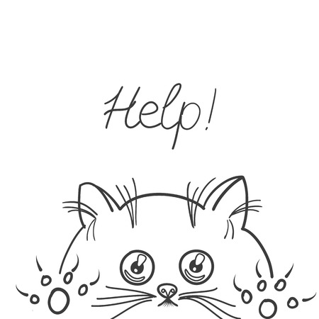 Sketch of kitten on white background.Cute graphic for kids.Graphic textiles