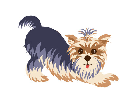 Yorkshire Terrier in a funny pose hand drawn painted cartoon