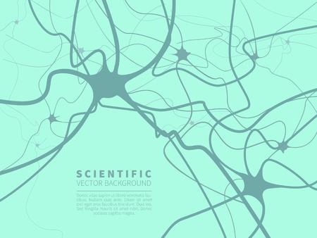 Modèle du système nerveux Banque d'images - 79404019
