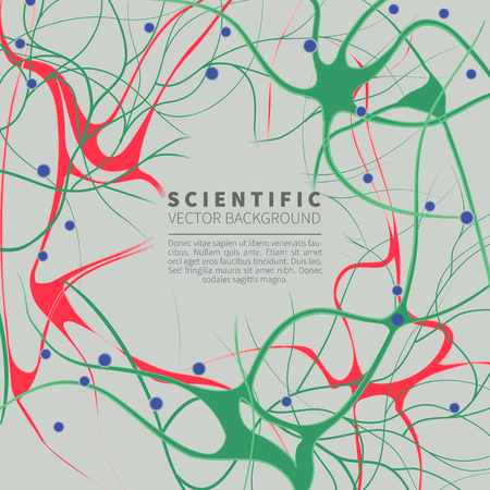 Modell des neuronalen Systems Standard-Bild - 79892277