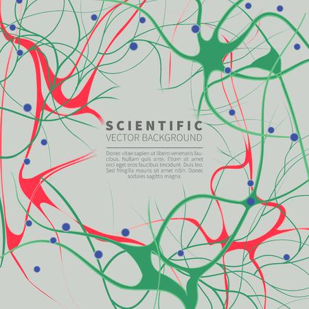 model of neural system