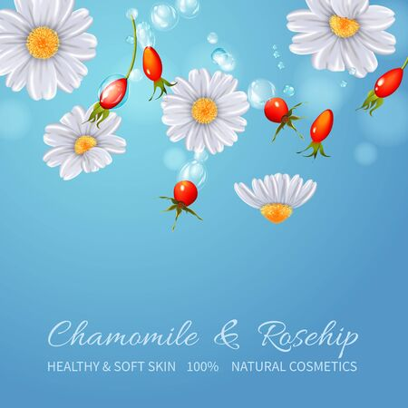 Rose hips and chamomile in falling motion. A vector illustration.