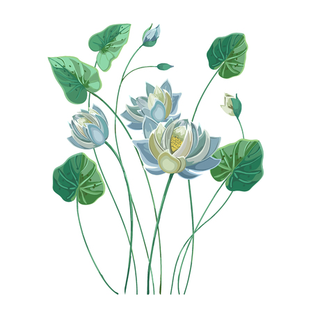 Composition of blue lotus flower with green leaves Vector Illustration
