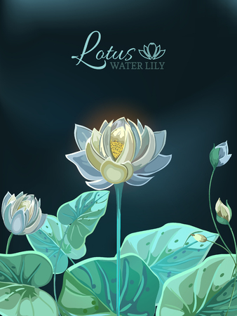Lotus flower with green leaves close-up in hand drawn style