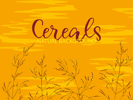 Cereal field.Border of hand drawn cereal plants on colorful background.Wheat ear,organic grain.Digital canvas artwork.