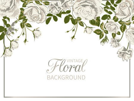 Vector vintage floral background.Wedding card with frame of white roses on white.Flowers Botanical drawing in watercolor style.