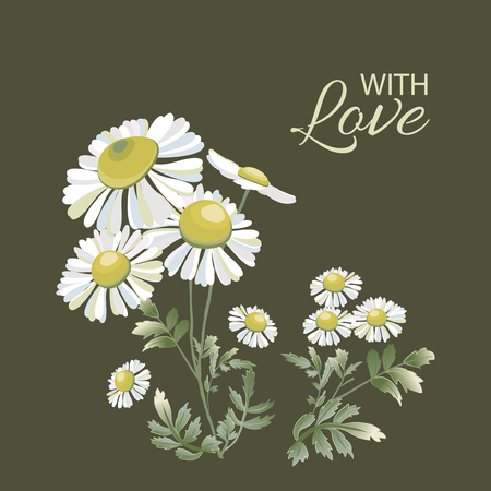 Greeting card with bouquet of daisies on dark. Chamomiles flower