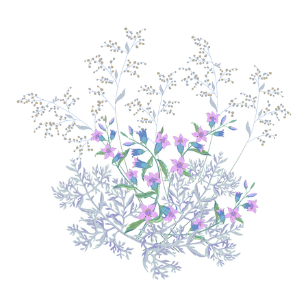 Bouquet of field and meadow grass, plants and flowers on white.The big bell and blossoming wormwood,composition on white background.