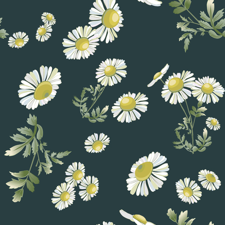 Many daisies scattered randomly on indigo background. Chamomiles flower hand drawn drawing. Vector floral seamless pattern. Wild botanical garden bloom.