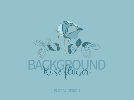 Blue rose flower, monochrome color, closeup. Logo, template, brand company Illustration