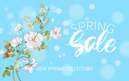 Inscription Spring Sale in background floral branch of beautiful white wild rose with rose hips, bokeh effect. Vector illustration