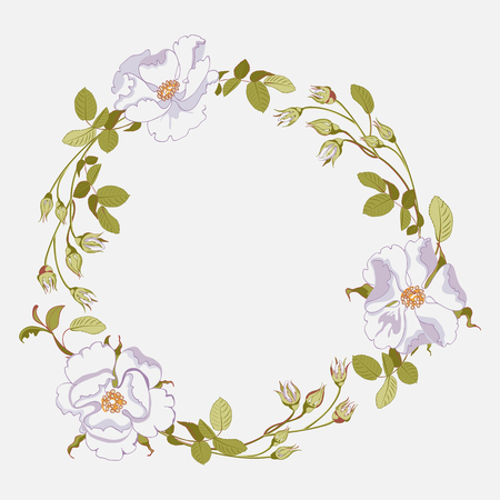 Floral wreath of branches, greenery and buds of white wild rose on white background, close-up. Vector illustration