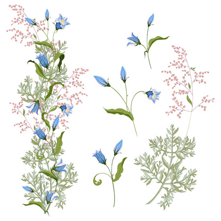 Collection floral bunch of hand drawn wildflowers bluebell and blooming wormwood, arrangement for design on white background. Vector illustration