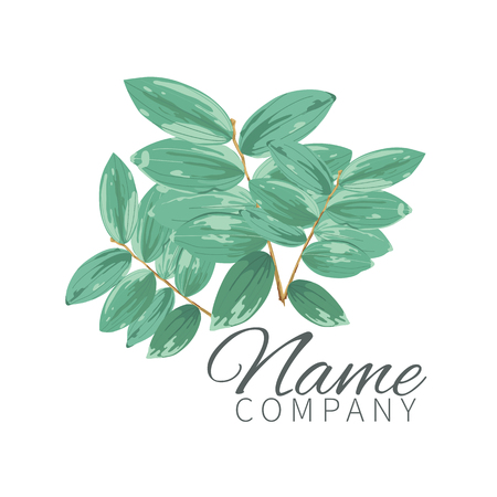 Composition of large exotic tropical leaves on a white background, close-up