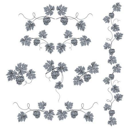 Silhouette de grappe de raisin et de feuilles se bouchent, bleu sur fond blanc. Vecteurs