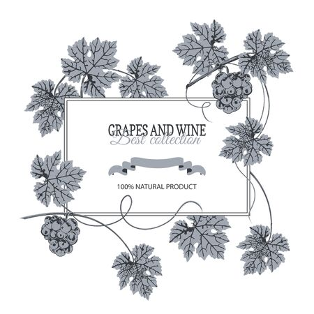 White banner for text, around bunch of grapes and leaves, blue on white background.
