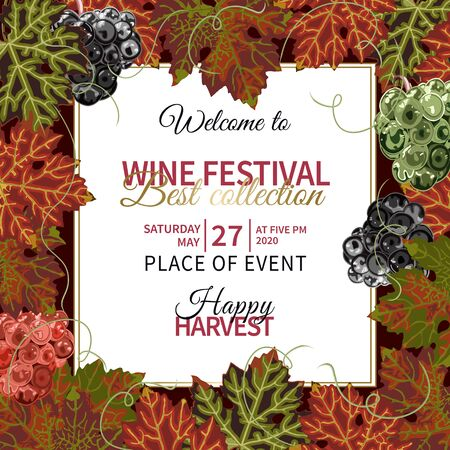 Colorful background with grapes and vine for wine festival. 向量圖像