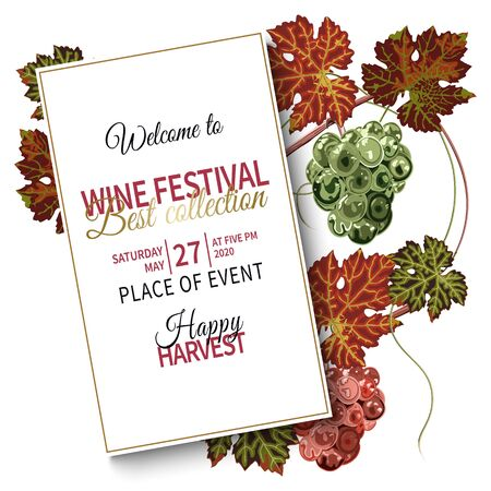 Colorful background with grapes and vine for wine festival. 版權商用圖片 - 132119321