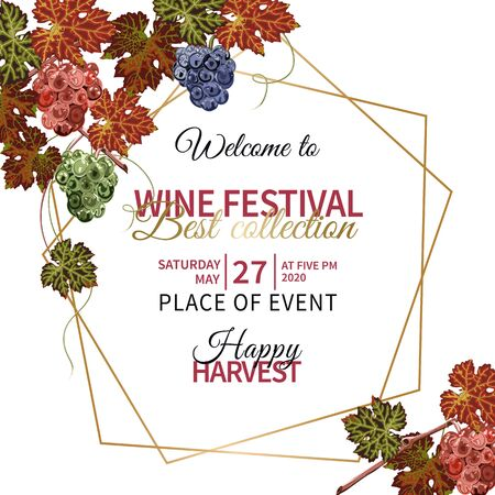 Colorful background with grapes and vine for wine festival. 版權商用圖片 - 132121355