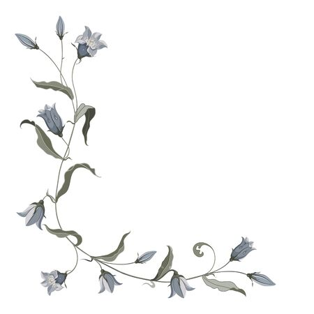 Corner composition of hand drawn blue bell flower for design