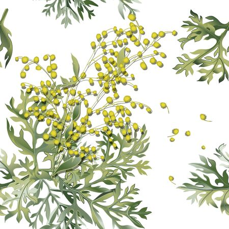 Seamless pattern of wormwood. Artemisia absinthium. Wormwood branch, wormwood flowers and leaves.