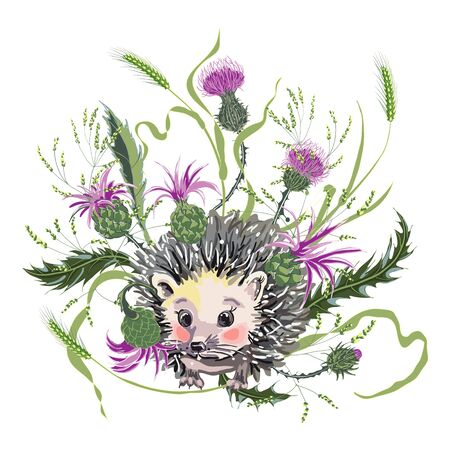 Cute hedgehog among wild herbs and milk Thistle